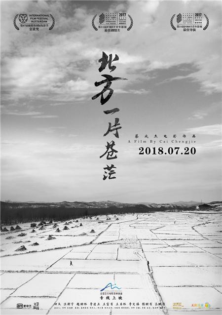 """A poster for the arthouse film """"Mirrors and Feathers"""", which will hit screens across China on Friday, July 20, 2018.[Photo provided to China Plus]"""