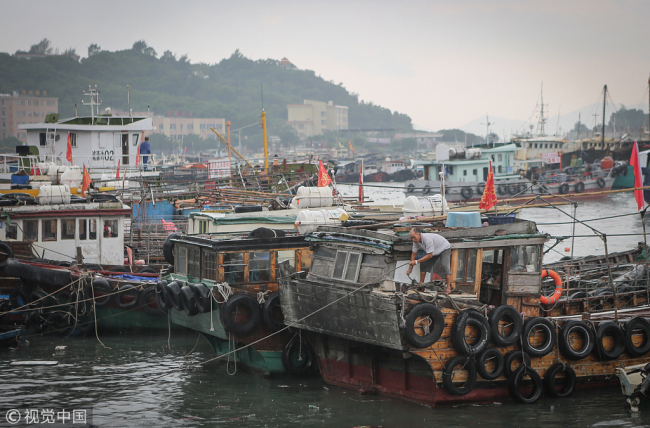 Fishing boats rest at port for safety in Yang River, Guangdong province ahead of the arrival of typhoon Bebinca, Aug. 14, 2018.[Photo: VCG]