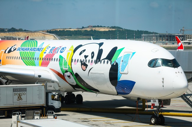 An Airbus A350 in panda livery at Istanbul Airport in Turkey on Thursday, August 1, 2019.[File Photo: Anadolu Agency via IC/Muhammed Enes Yildirim]