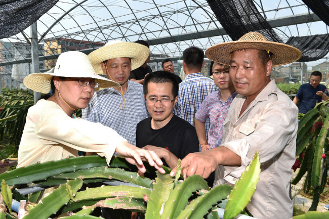 Agricultural experts check a fruit garden affected Typhoon Lekima in Taizhou, east China's Zhejiang Province, on August 13, 2019. [Photo: IC]